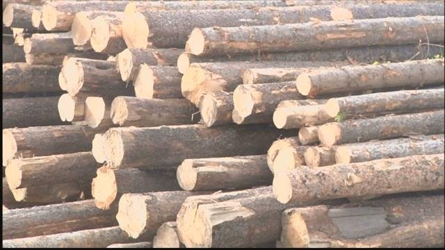 The Softwood Lumber Agreement imposed export fees on Canadian lumber headed to the U.S. (MTN News photo)