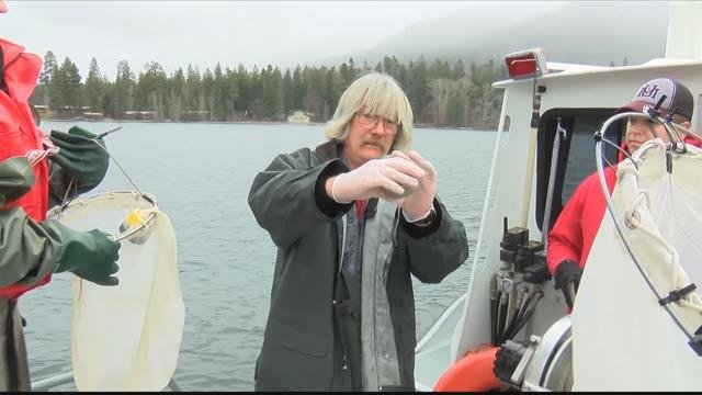 The Flathead Lake Biological Station is looking to new technology to detect invasive species. (MTN News photo)