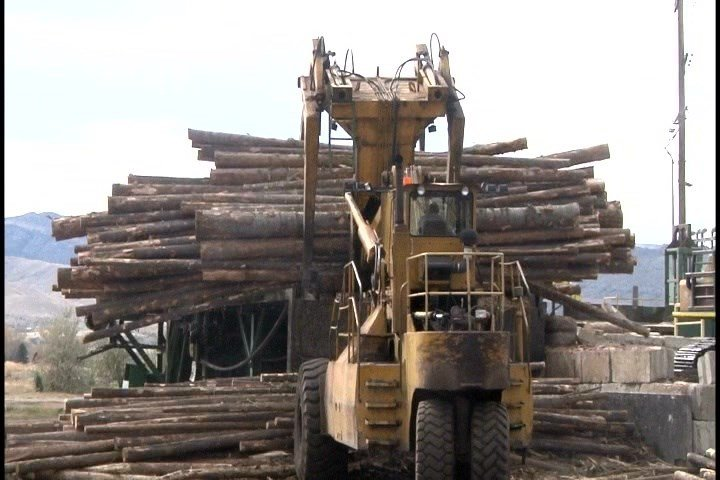 The tariffs announced this week range from 3% to 24% for five Canadian lumber companies. (MTN News photo)