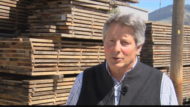 Superior Hardwoods of Montana owner John Medlinger says he is always looking for the next wooden motherlode. (MTN News photo)