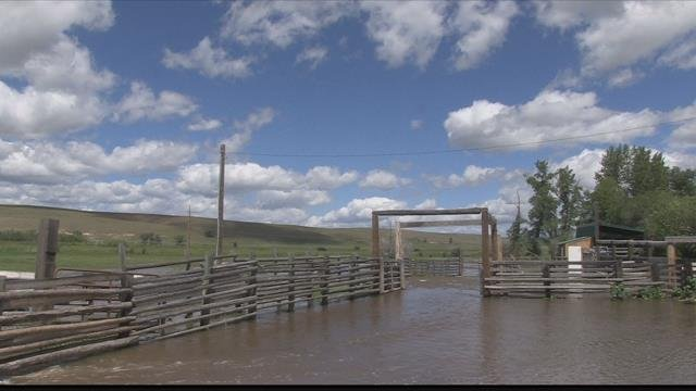 Some areas received 3.5 inches of rain in 24 hours. (MTN News photo)