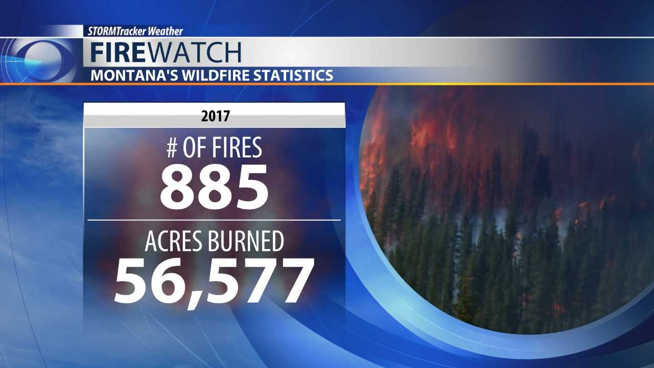Montana's wildfire statistics (as of July 17)
