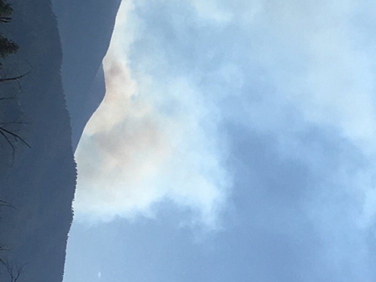 A top level fire incident management team is taking over at the Lolo Peak fire. (MTN News/Mark Thorsell photo)