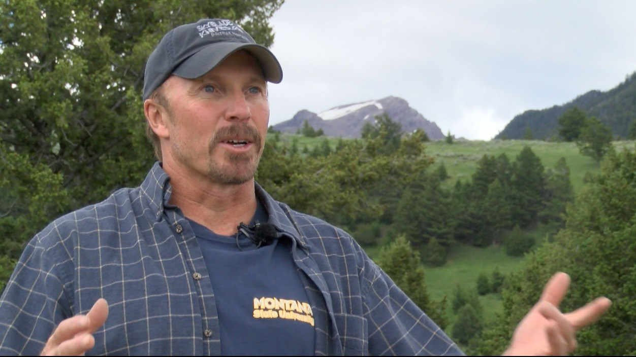 In October of 2016 Orr was in the Bear Creek drainage south of Ennis scouting for elk. He started walking down the trail before the sun came up. Three miles later he first saw the bear that attacked him. (MTN News photo)