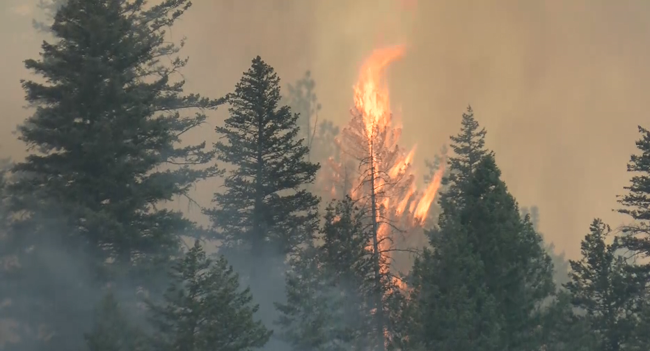 The Lolo Peak fire continues to burn between Lolo and Florence. (MTN News photo)