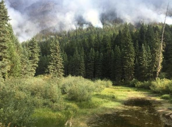 The Sprague fire continues to burn near West Glacier in Glacier National Park. (inciweb.org photo)
