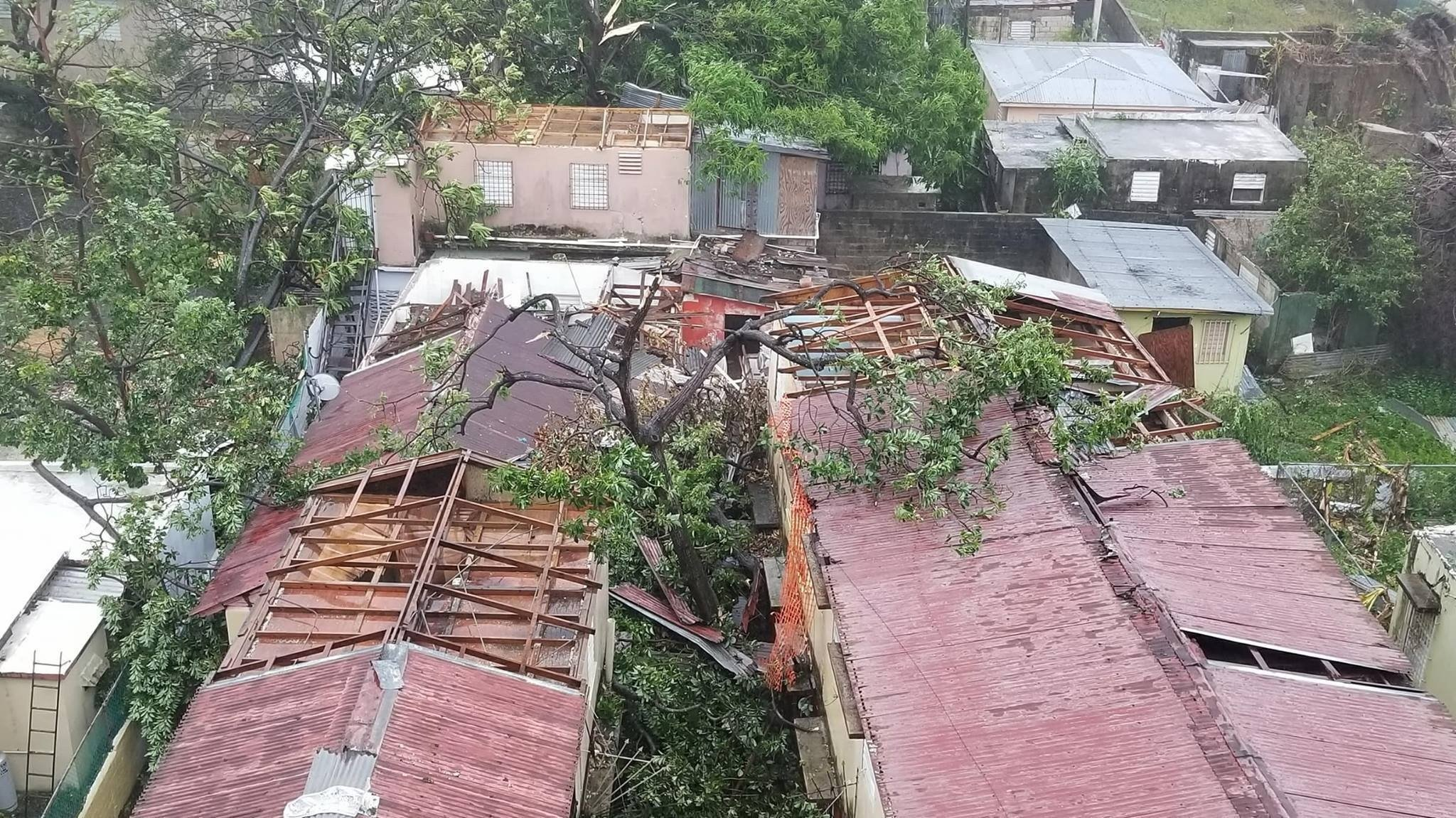 Roofs ripped off houses in San Juan, Puerto Rico as Hurricane Maria slammed into the city on Sept. 20. (photo credit: Fred Rasmussen)