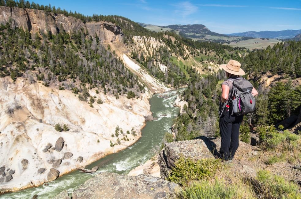 (Photo Credit: Overlooking the Yellowstone River near Yellowstone River Picnic Area. NPS / Jacob W. Frank)