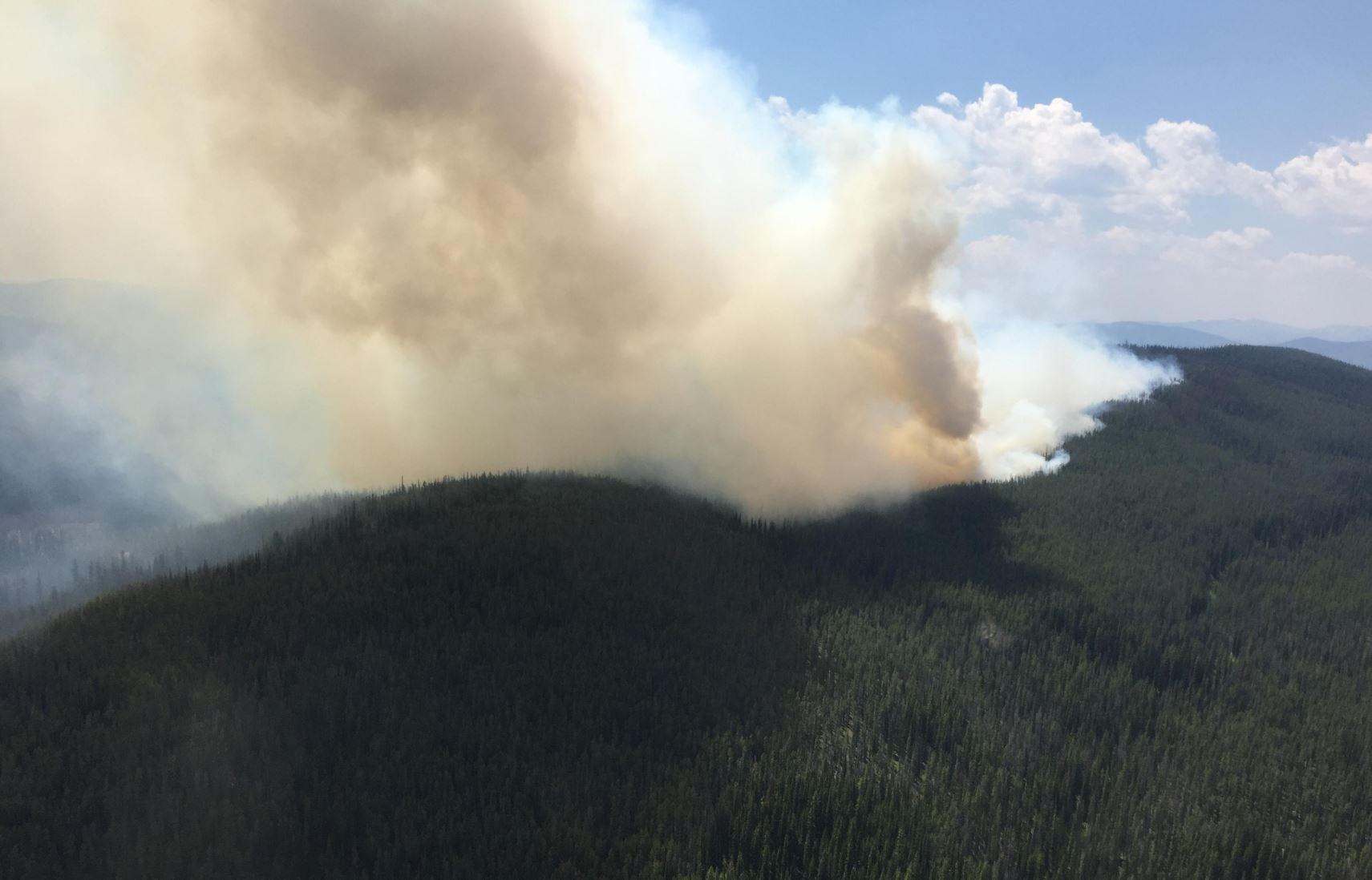 The Reynolds Lake Fire (inciweb.org photo)