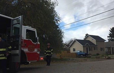 Tree Tangled In Power Lines Prompts Power Shut Off In