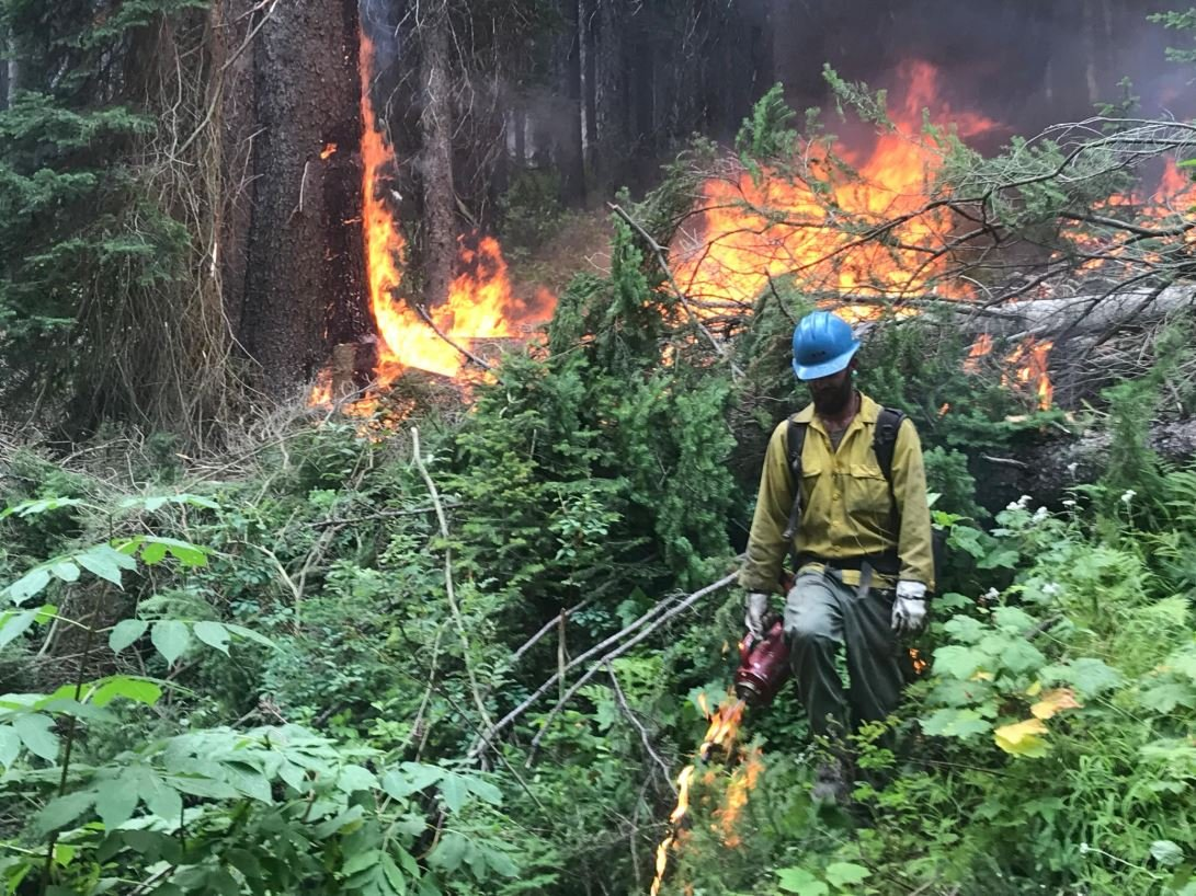 Beau Marin, Flathead Interagency Hotshot Squadleader, pulls the the uncontained northwestern flank of Huckleberry Fire into containment lines. (inciweb.org photo)